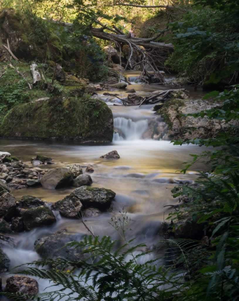 Small creek with waterfall