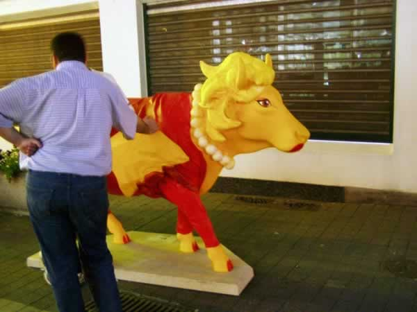 The dressed-up cow