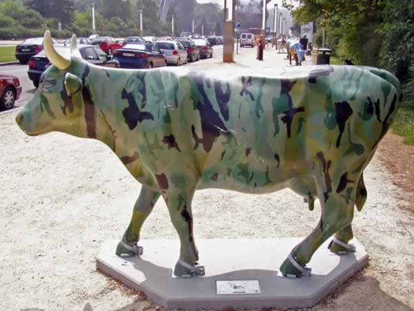 Camouflage cow