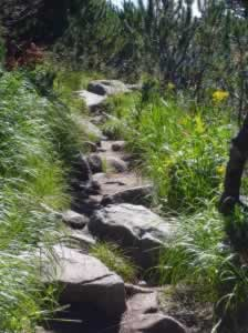 The path is rocky