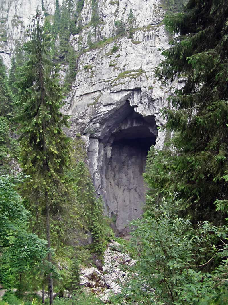Cetatile Ponorului - The Portal