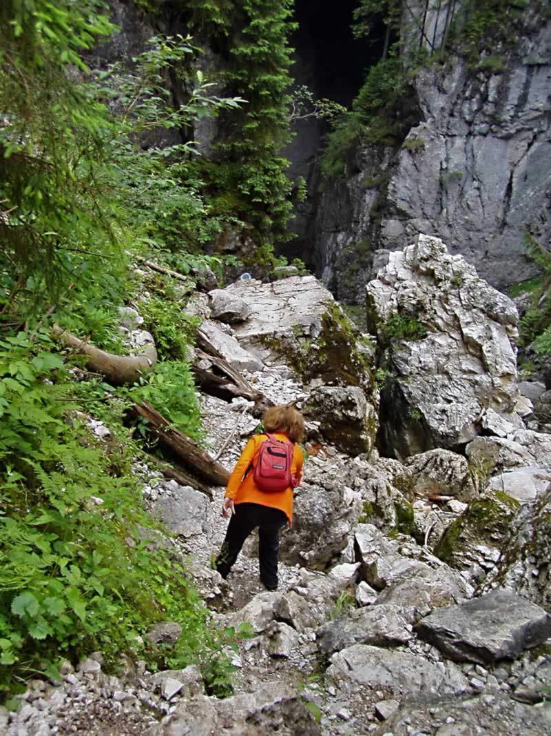 Rocky trail in Apuseni mountains