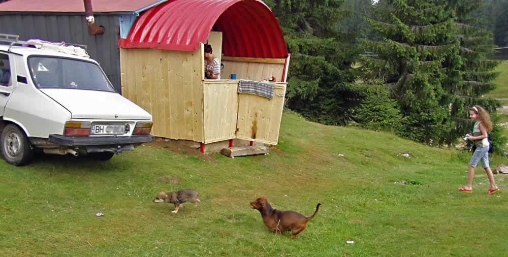 Cabin in Padis camping