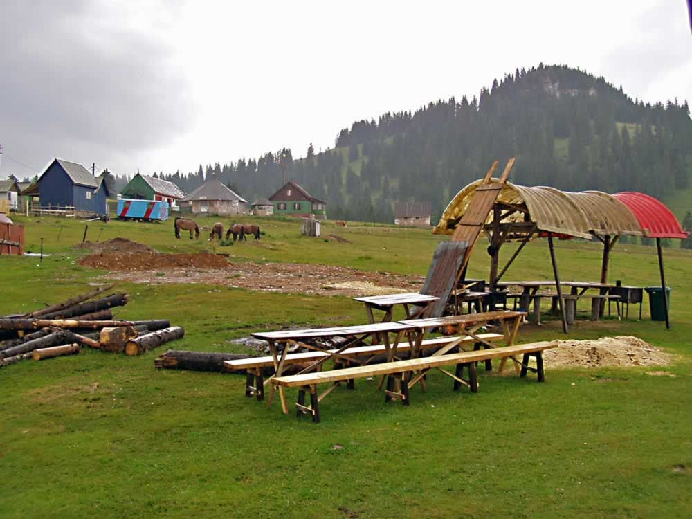 Padis camping