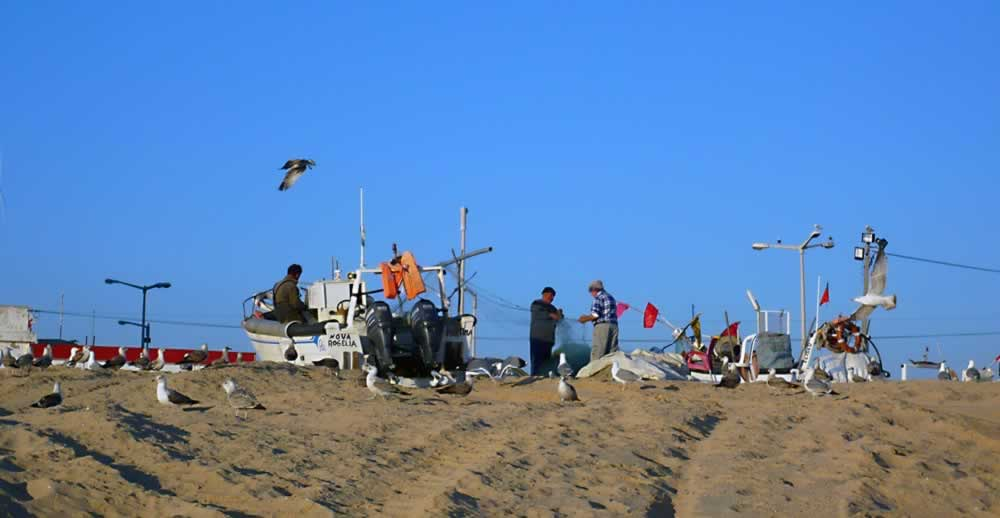 Fishermen on the beach