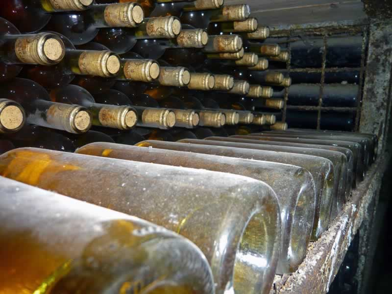 Old wine bottles in Beciul Domnesc