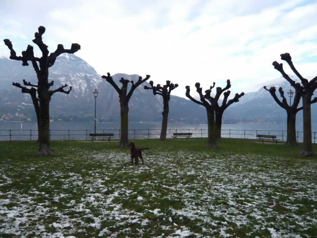 lake como in winter