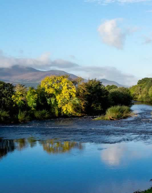 From Killarney to Kenmare, Are We on a Fairy Path?