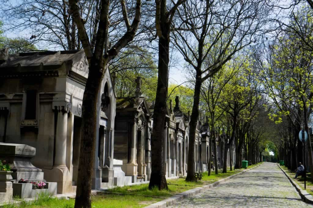 cemetery alley with trees and tombs
