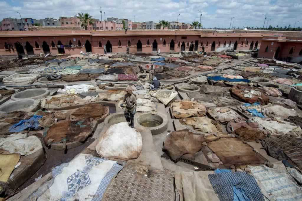 morocco tanneries workers