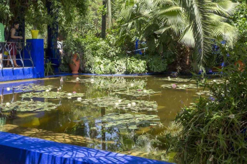 Jardin de Majorelle pond with flowers and sun