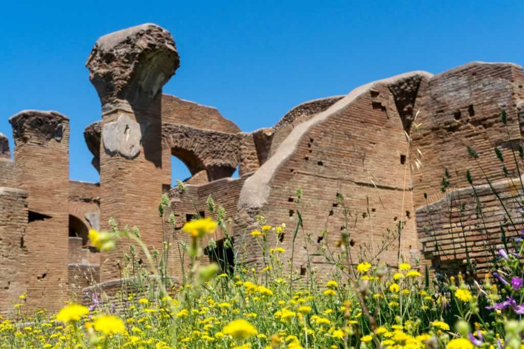 Ostia Antica walls with yellow flowers