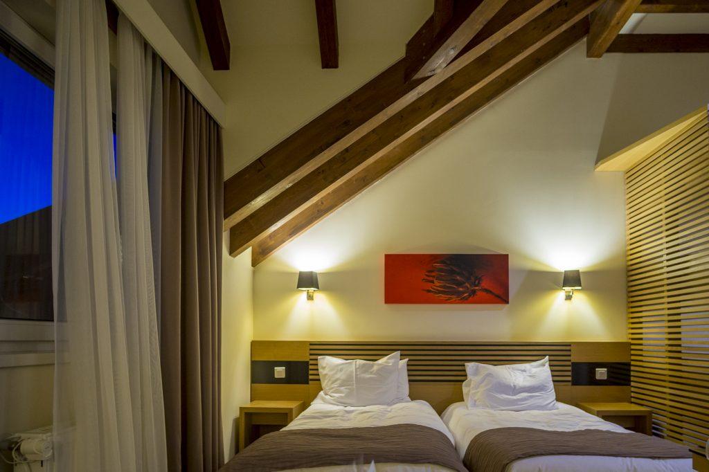Ana Hotels Sport Twin Room