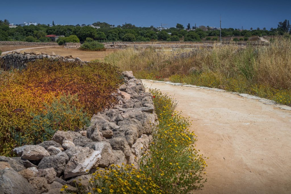 Kato Paphos archeology park and town buldings