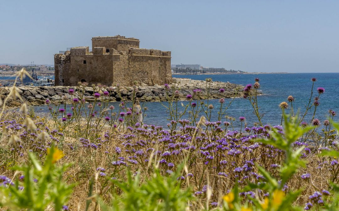 Paphos Archeological Park and the Castle are worth a visit
